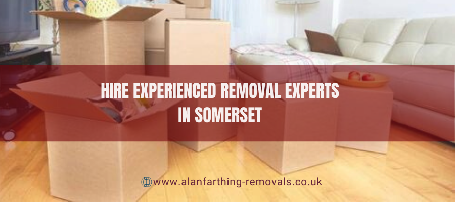 removal experts in Somerset